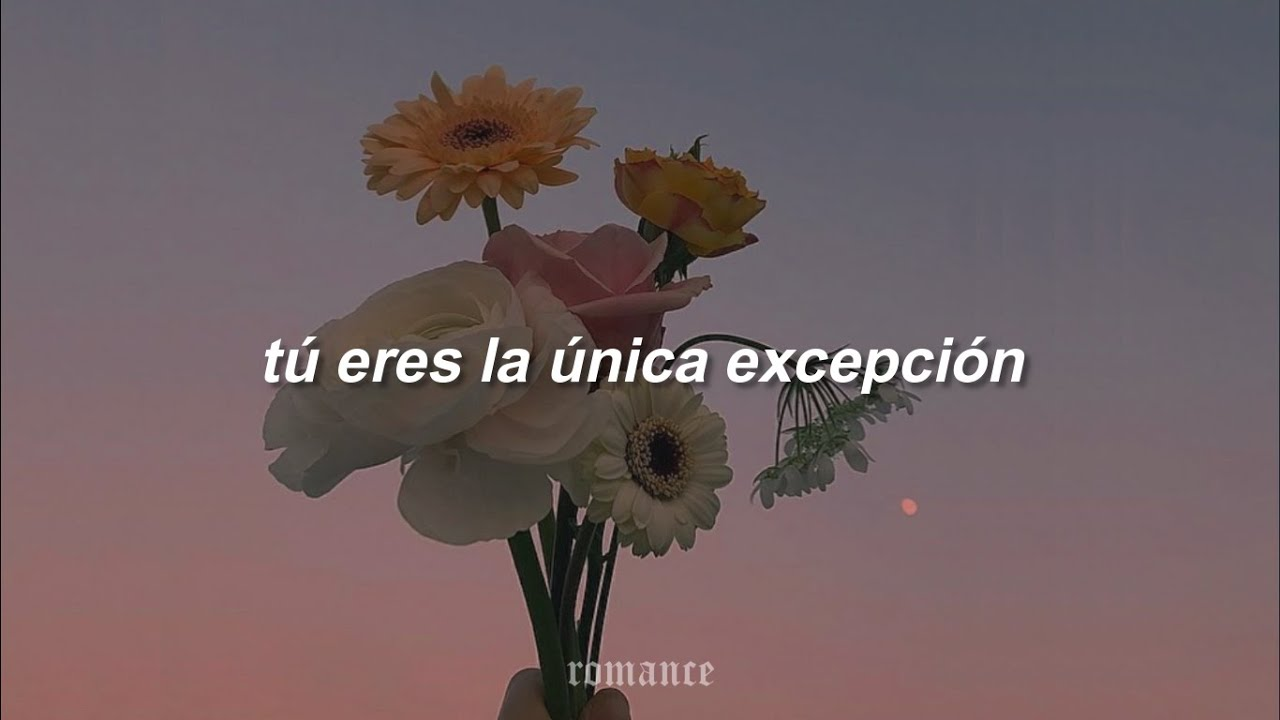 rosé - the only exception [cover] (español)