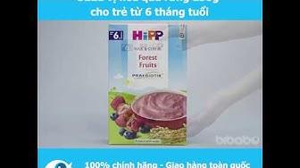 Bột sữa HiPP Praebiotik Organic vị hoa quả rừng 250g cho trẻ từ 6 tháng tuổi - Bibabo