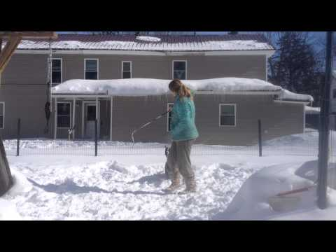 Flirt pole in the snow