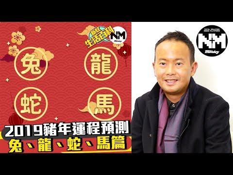 堪輿學家潘師傅2019豬年生肖運程預測 兔、龍、蛇、馬篇【新蚊生活百科】