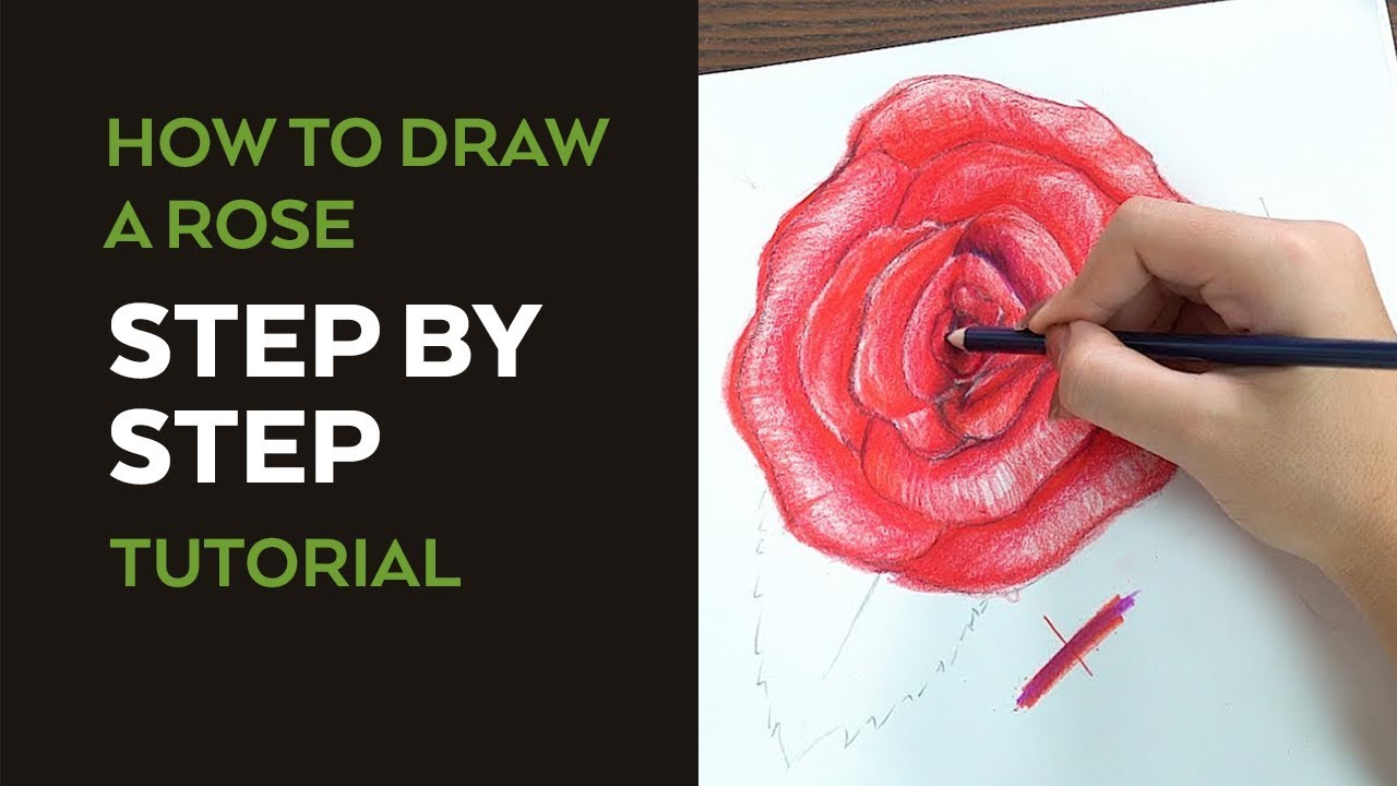 How To Draw A Rose: Narrated Step By Step Video Tutorial