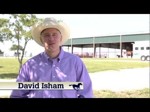 Horseman's Ranch Story