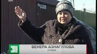 Жители Челябинска жалуются на дикого соседа. Волк воет по ночам и мешает спать