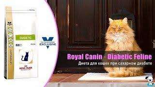 Сухой корм диета для кошек страдающих сахарным диабетом · Royal Canin Diabetic Feline