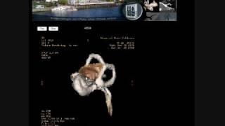 Atlas Anatomico Imagenologico del Oido