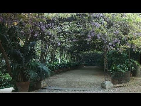 Jardin Botanico Parque De La Concepcion Malaga Youtube