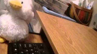 Rabid Duck Takes Typing Lessons!
