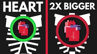 What If Your Heart Was Twice As Big?