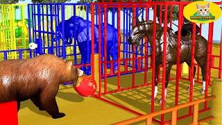 색칠 게임 거대한 애완 동물 | 자녀 교육 #33