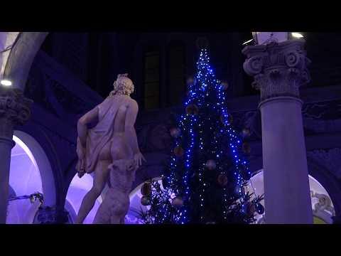 Accesi Gli Alberi Di Natale A Firenze