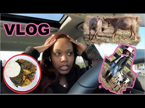 What my life is REALLY like! BTS Video Shoot and Trying FUFU EGUSI
