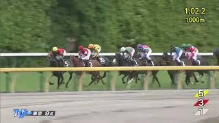 http://keibalist.com/race/201805020909/ http://keibalist.com/horse/...