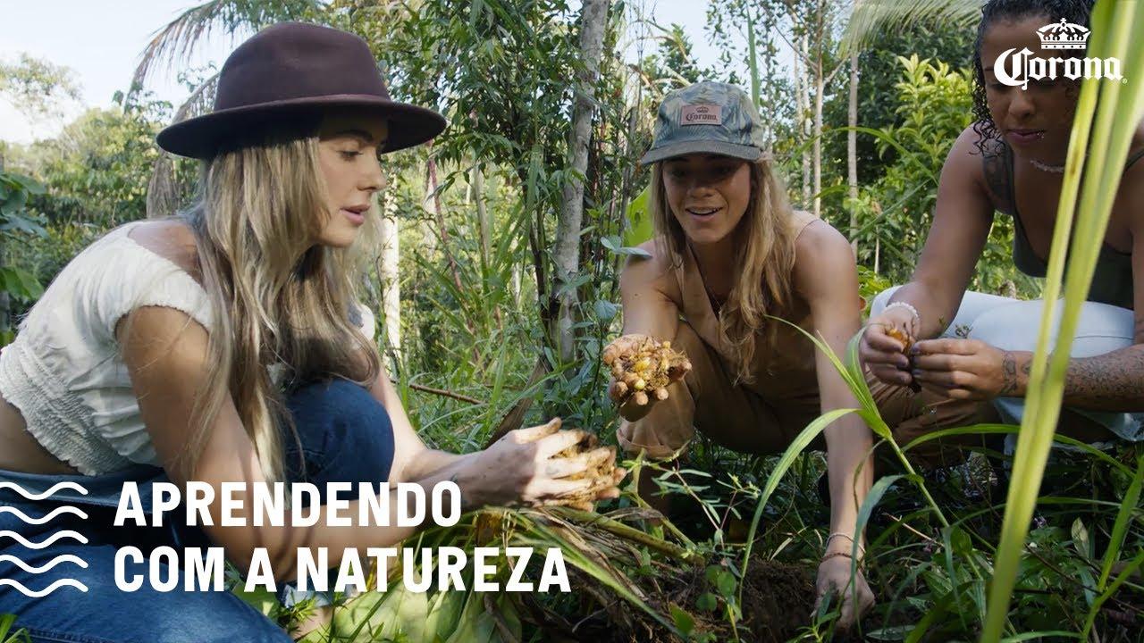 Aprendendo com a natureza - Bahia