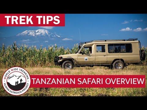 Tanzanian Safari Overview   Trek Tips