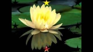 Namo Guan Shi Yin Pusa
