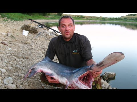 Какая ловится рыба в г отрадный
