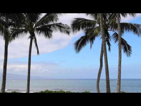 Relaxing Sounds and Sights of Waves Crashing - Maui, Hawai'i