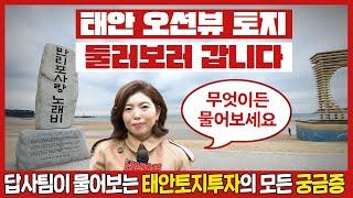 돈되는땅, 태안현장답사 5편! [바다조망권토지] 태안토…