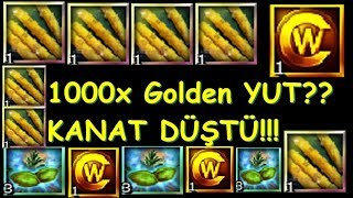Knight Online 1000x Golden Yut Kırdırmak (KANAT DROPLU)