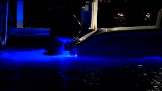 Tips from the Pros / Underwater Lights for Boats