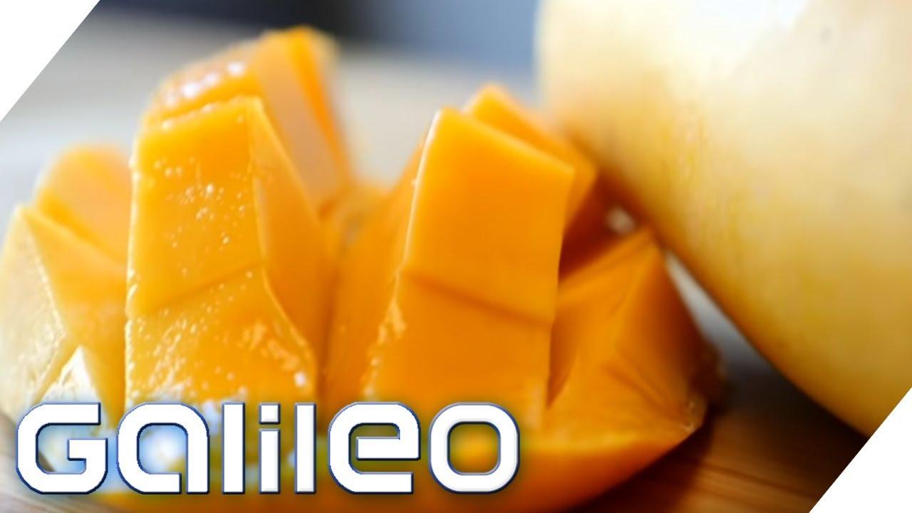 Mangos frisch vom Baum - Dieser Online-Shop macht's möglich | Galileo | ProSieben