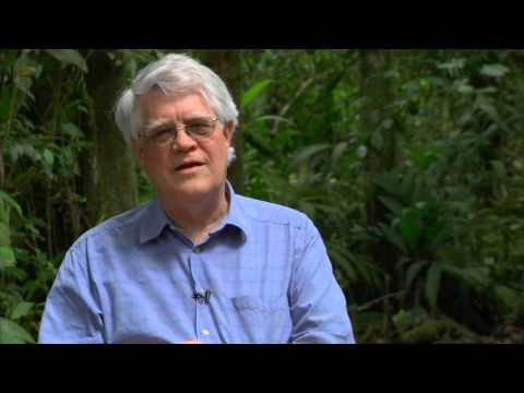 Robert K Colwell Interview