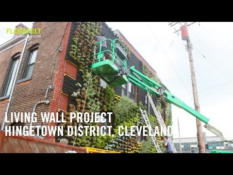 Hingetown Cleveland Living Wall Project