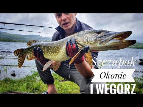 Loch Awe Pike Fishing