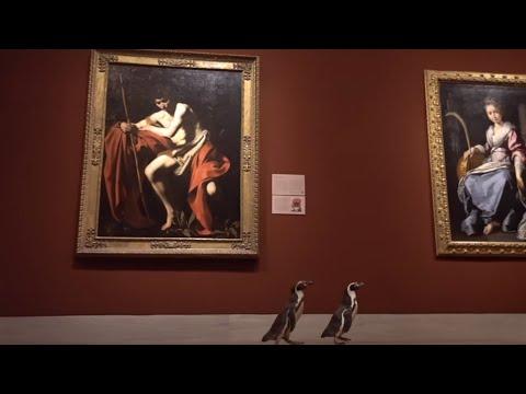 ¿Qué hacen tres pingüinos en un museo de arte?