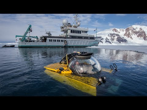 The Deepest Dive in Antarctica Reveals a Sea Floor Teeming W