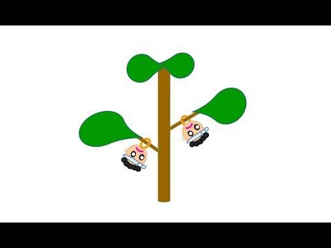 大工のまこちゃん ~ この木なんの木 ~