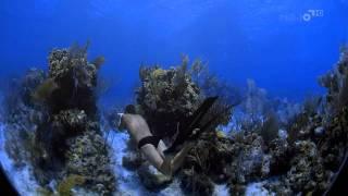 Человек океана: Экстремальное Погружение(http://dzenfilm.com Этот фильм - захватывающая история двух фридайверов, двух чемпионов мира по нырянию без аквалан..., 2011-10-02T21:53:02.000Z)