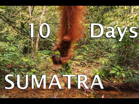 Sumatra | Indonesia | Backpacking | 2016 | GoPro