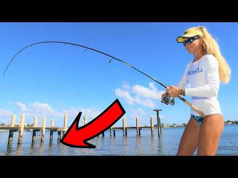 Inshore FISHING THE DOCKS For Snook! Stuart Florida Fishing Video!