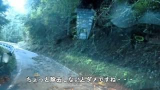 山梨県廃隧道(雛鶴隧道・上野原市側)2011年9月25日