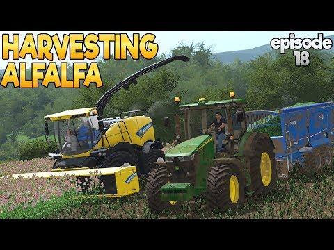 Thornton Farm - Farming Simulator 17 -  Ep.18 (with Wheel Cam)