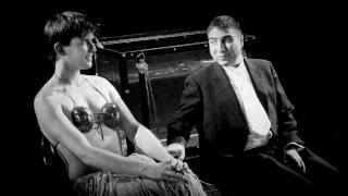Mr Swallow - Houdini