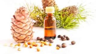 КЕДРОВОЕ МАСЛО ПОЛЬЗА | кедровое масло применение, кедровое масло лечение