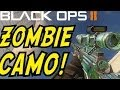 Black Ops 2 NEW DLC! - ZOMBIE CAMO!