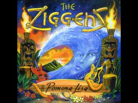 The Ziggens - Surfin' You Say?