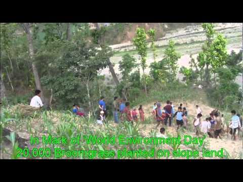 Kankada VDC WED plantation Programme movie 1.avi
