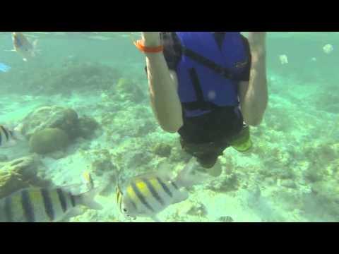 Snorkeling Cayo Coco, Cuba