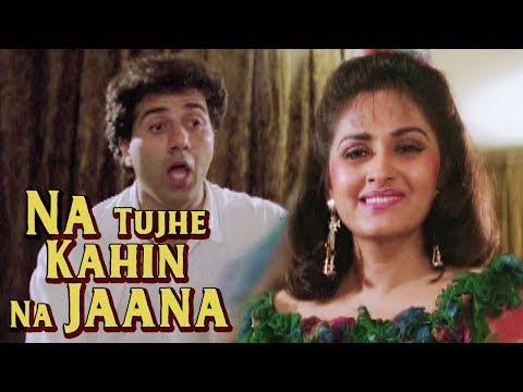 Na Tujhe Kahin Na Jaana | Jayaprada Sunny Deol | Veerta (1993) | Bollywood Songs
