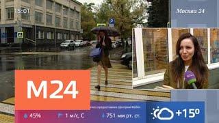 В столице бушует циклон - Москва 24