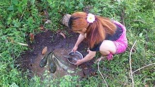 Wow! Beautiful Girl catch fish - fishing at tiny creek - Fishing In Cambodia