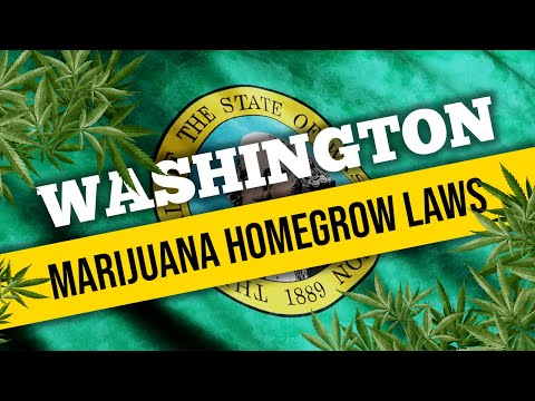 Washington Marijuana Laws for Home Cultivation and Medical Use in 2021
