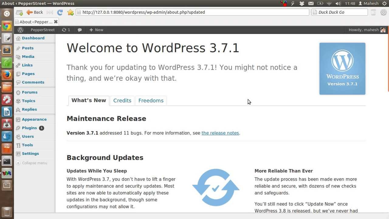 How to Enable or Disable Automatic Updates in WordPress