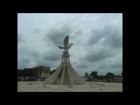 Togo: La révélation sur la colombe de la paix