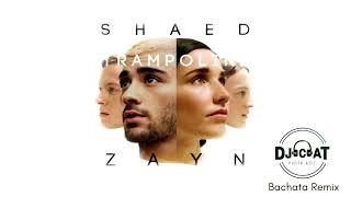 ZAYN - Trampoline ft. Shaed (Bachata Remix DJ Cat)