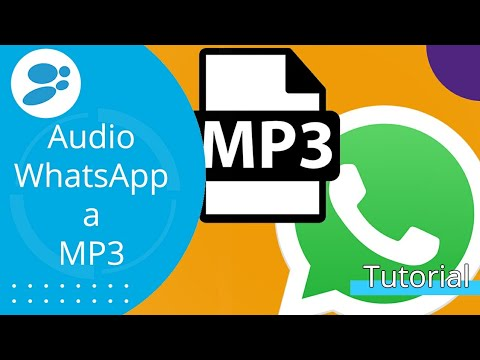 Cómo Convertir Audio De Whatsapp A Mp3 En Android Youtube